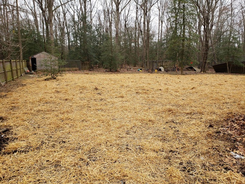 seed and straw va pool removal finished